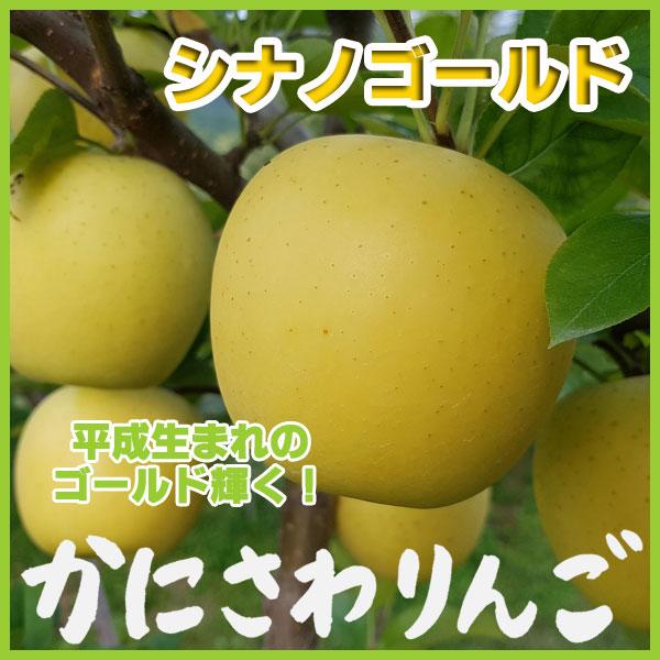 蟹沢りんご シナノゴールド