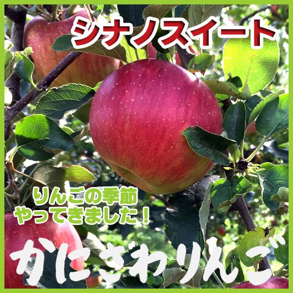 蟹沢りんご シナノスイート